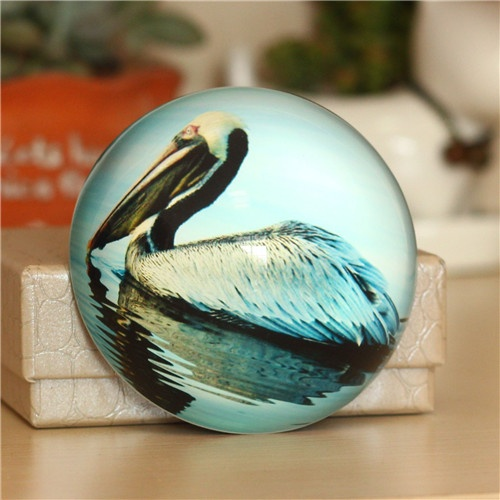 Gift ideas for men paperweight